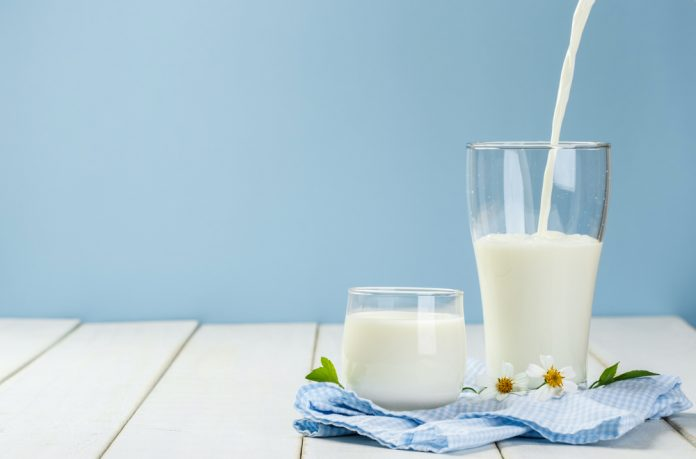 Why Are We Still Able To Drink Milk?