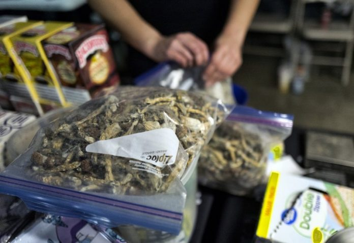 Denver says no to magic mushrooms in a major public vote
